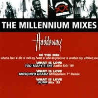 What Is Love (The Millenium mixes)