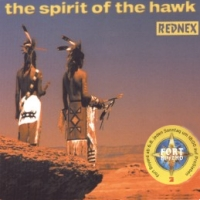 The Spirit Of The Hawk